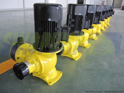 DM mechanical diaphragm dosing pump