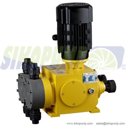 2DX duplex head diaphragm metering pump