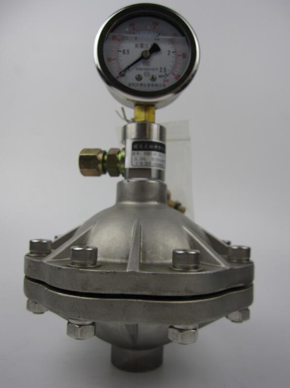Diaphragm Pulsation Damper in stainless steel