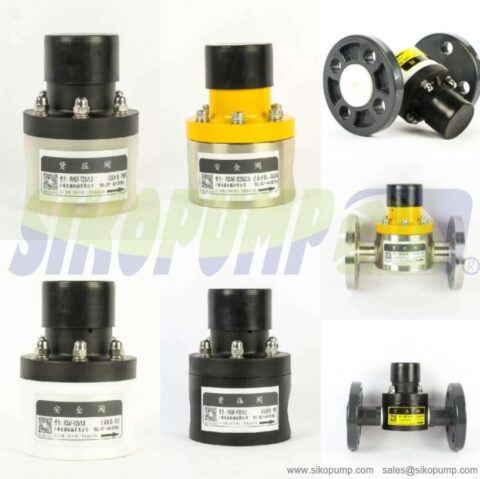 metering pump back pressure valve China